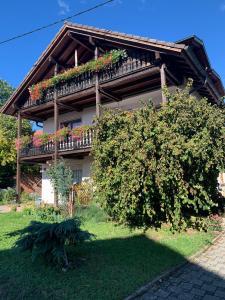 Gästehaus zum Rhein
