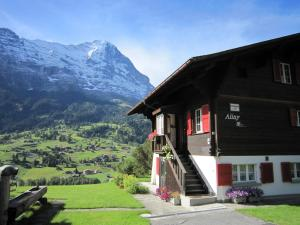 Chalet Aiiny - Apartment - Grindelwald