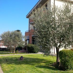 Accommodation in Campagna Lupia