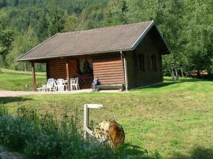 Location gîte, chambres d'hotes Cozy Hill View Chalet in Ventron near Ski Lift dans le département Vosges 88