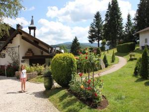 Location gîte, chambres d'hotes Chalet Les Chalets Des Ayes 2 dans le département Vosges 88