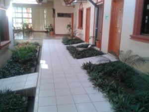 Hotel Brial Plaza, Hotel  Managua - big - 22