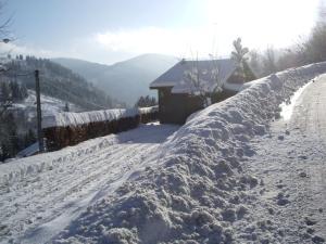 Mountain View Chalet in Ventron near Ski Area - Hotel - Ventron