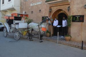 Riad Golf Stinia