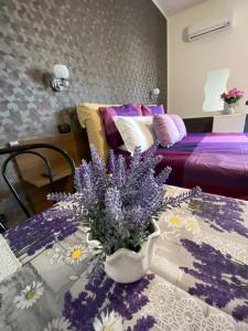 Villa Nancy Camere & Appartamenti