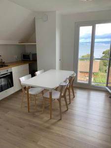Superbe appartement avec vue Lac - Hotel - Lugrin
