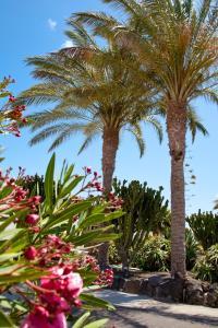 Villas Kamezi, Vily  Playa Blanca - big - 31