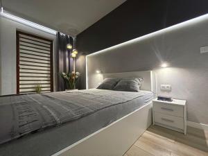 4UApartApartment suite Platan Grey