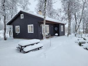 Svein\'s Cottage
