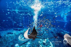 Atlantis Sanya (28 of 294)