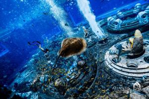 Atlantis Sanya (30 of 294)