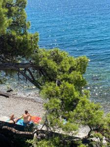 RIA Lungomare - Hotel - Rijeka