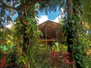 Cascada Verde Hostel