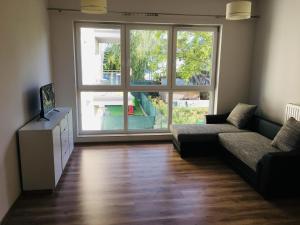 Apartament U16