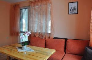 Guest House Eli, Pensionen  Saparewa Banja - big - 10