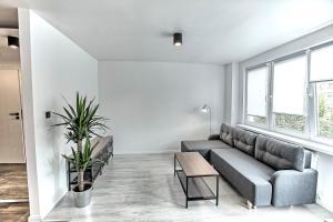 Apartament Akademia