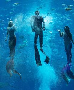 Atlantis Sanya (11 of 294)