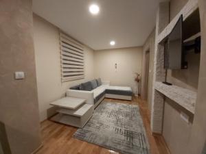 Apartmani Ristanovic - Apartment - Zlatibor
