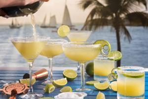 Margaritaville Key West Resort & Marina (7 of 70)