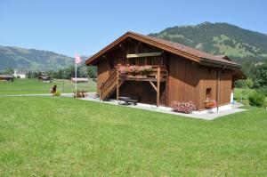 Alpenchalet Weidhaus-Spiher Ferienwohnungen & Studio & Zimmer - Hotel - Gstaad