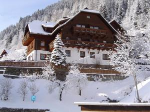 Landhaus Hinteregger - Accommodation - Bad Kleinkirchheim