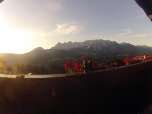 Appartements Wilma - Apartment - Schladming