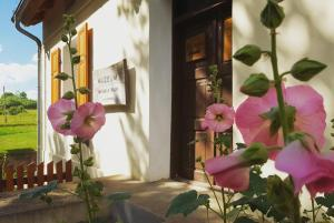 Apartament w Muzeum Michała Kajki