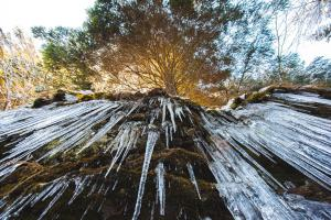APARTMENTS ROGLA JURGOVO - Ski in Ski out