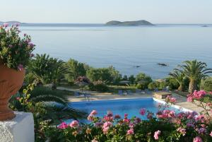 Andros Holiday Hotel Andros Greece