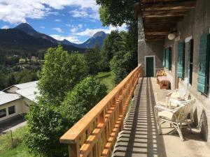 La casa del Noce, immersa nel verde delle Dolomiti - Hotel - Pieve di Cadore