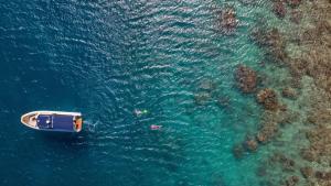 InterContinental Hayman Island Resort (33 of 135)