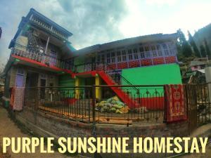 Purple Sunshine Homestay