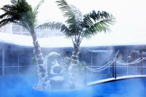 Отель Dolphin Planet