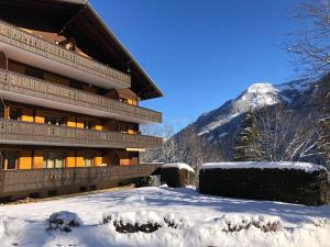 Monteilly A6 - Apartment - Champéry