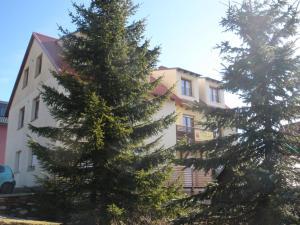 U Tří smrků - Apartment - Bozí Dar
