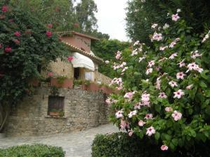 Hotel Villaggio Calaghena, Hotely  Montepaone - big - 33