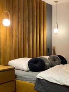 Sauna Apartment No 9 Klonowa nad Zalewem The Highest Standard