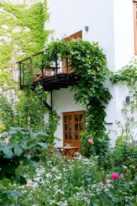 Schreiners Essen und Wohnen, Hotely  Vídeň - big - 2