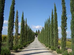 Villa Loggio Winery and Boutique Hotel, Hotely  Cortona - big - 70