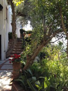 Hotel Villa Greta, Hotels  Taormina - big - 73
