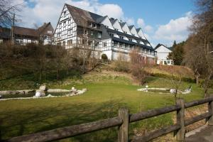 Hotel & Gasthof Hubertushöhe - Bad Berleburg