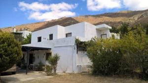 Villa Patty Andro's Island Cyclades-Greece Andros Greece