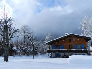 Chalet Les Frenes - Accommodation - Chamonix