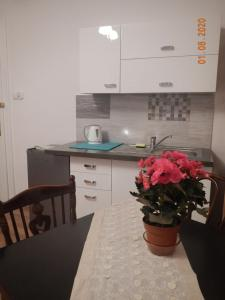 Apartament Providentia Zakopane Witkiewicza 3