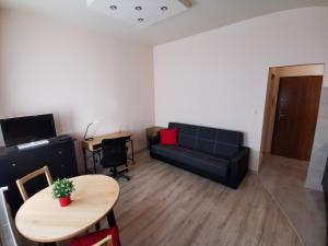 Little Big Red Central Modern Studio