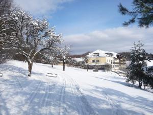 Wienerwaldhof Rieger