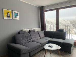 Apartament Ptasia
