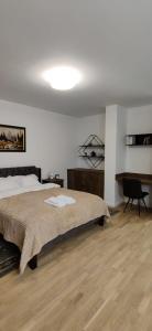 Apartament Sobarilor 38