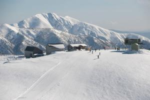 Accommodation in Hotham