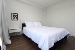Classic HP Studio with Fast Transit to UChicago & DT by Zencity